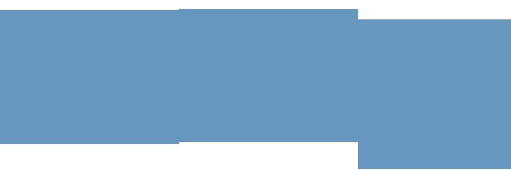 VIP Web Lead Agency Logo